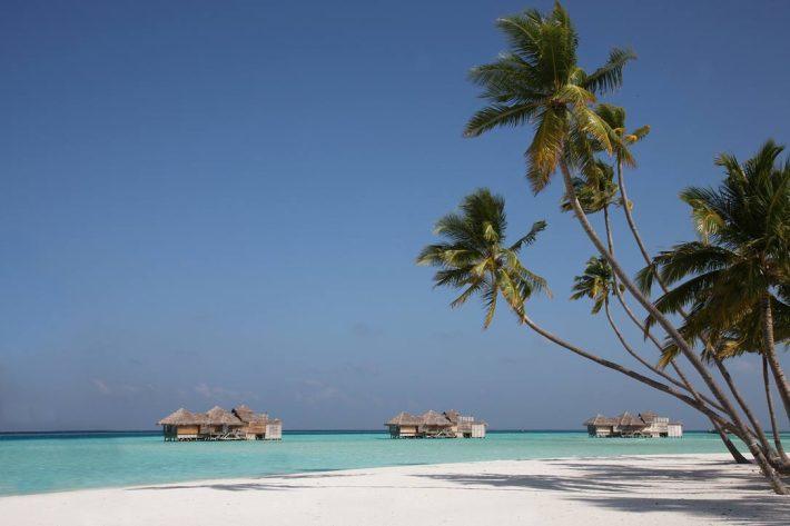 Palm_Beach2
