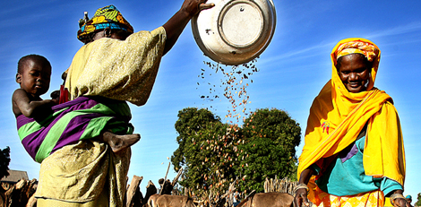 Senegal_005